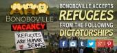 Bonoboville_Refugees_Banner-550x248