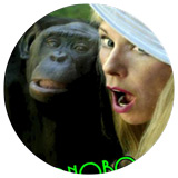 The-Bonobo-Way-Book-Cover-cicle