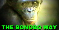 SAVEBONOBOS
