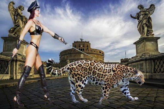 Glamazon Goddess Phoenix out for a stroll with a leopard.