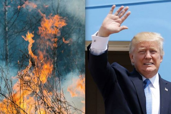 Trump's Tiny Hand emerging from the Holy Fire. Spotted by Jeffrey Vallance.