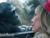 bonobo-kalli_drsuzy4_a