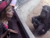 bonobo-kalli_drsuzy6_a