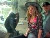 bonobo-suzy-max-a