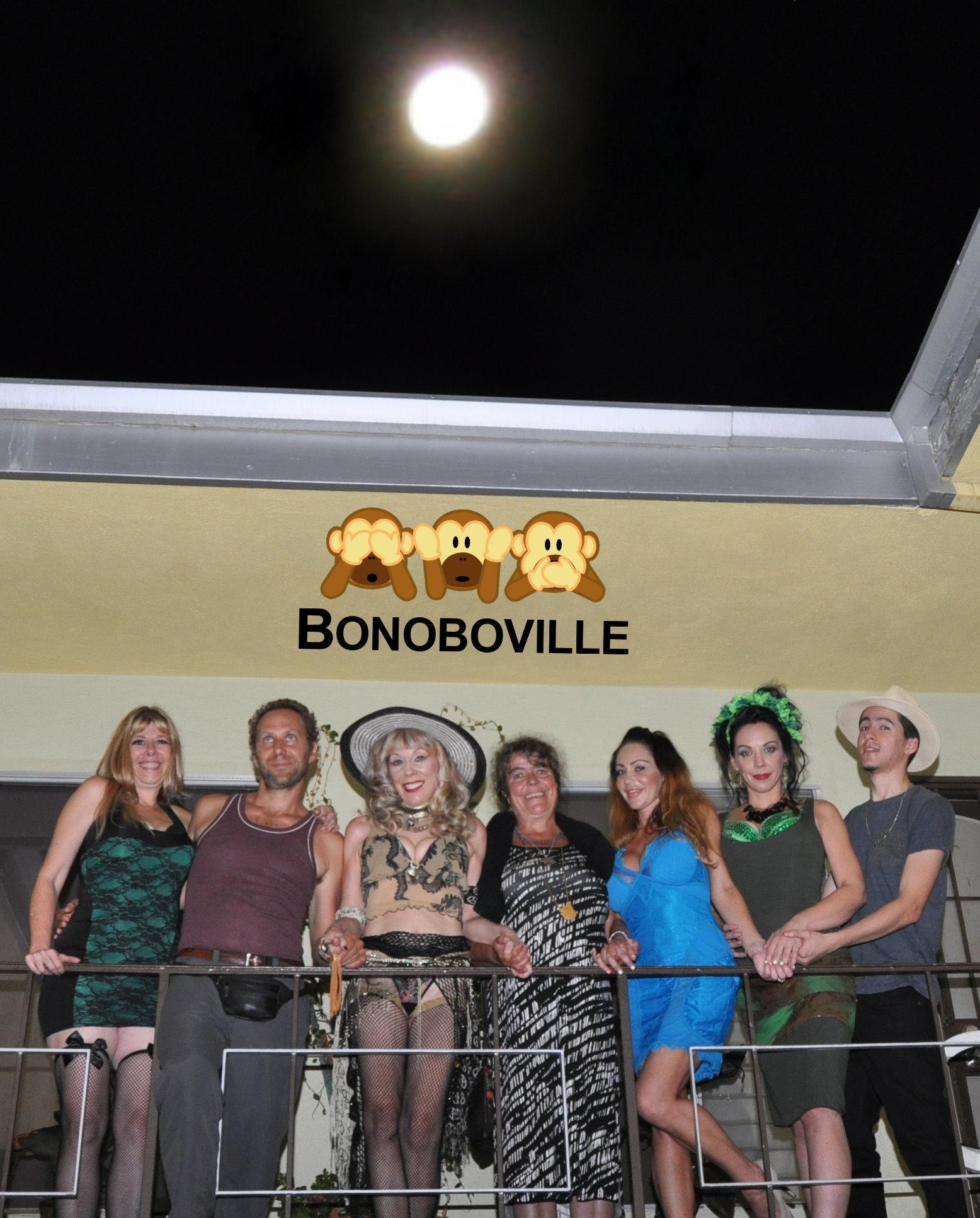 Harvest Supermoon Over Bonoboville. Photo: RingoShotYou