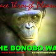 bonoboway600