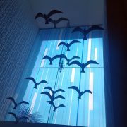 Gulls Galore Inside & Out