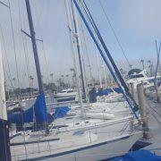 Harbor harmony