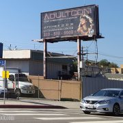 Adultcon Beckons