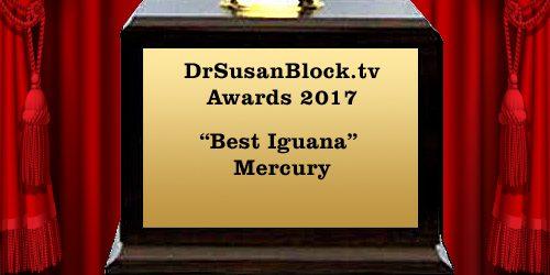 SuzyAward_2017_mercury