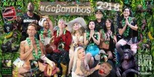 #GoBonobos in 2018