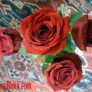 Valentine Roses for All