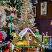 Dildonic Nativity