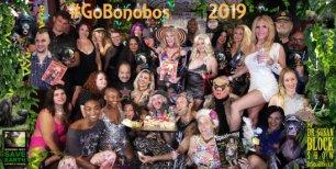 #GoBonobos in 2019