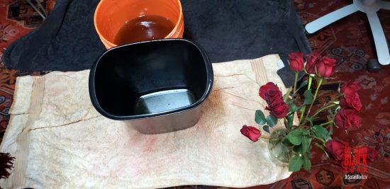 Red Roses and Valentine Brine.