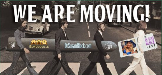 beatles-moving-bonoboville