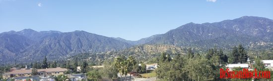 """Green & """"Purple Mountain Magesties"""" of the San Gabriels right outside our window."""