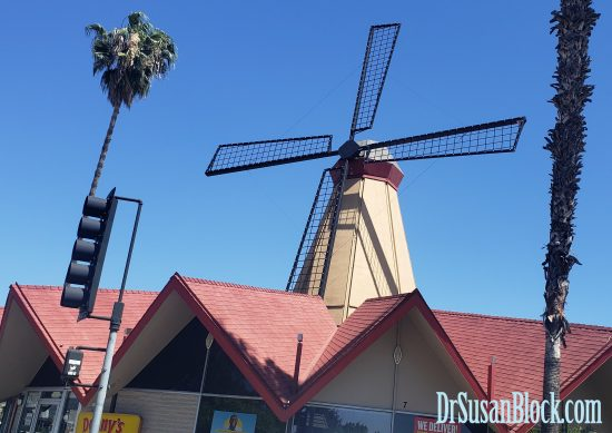 On the way back to Bonoboville, we saw this windmill over a Denny's. Would Trump say Denny's causes cancer? Photo: Max